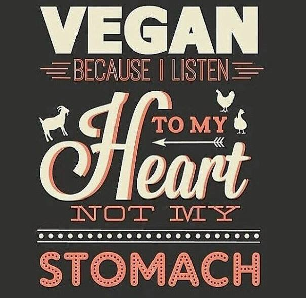 being vegan Here is why vegan diets and lifestyles have enormous appeal.